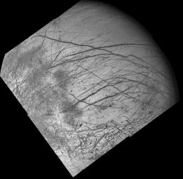 Dark Bands on Europa