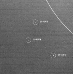 On Jan. 18, 1986, NASA's Voyager 2 discoverd three Uranus satellites. All three lie outside the orbits of Uranus nine known rings, the outermost of which, the epsilon ring, is seen at upper right.
