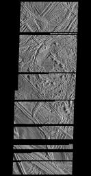 Structurally Complex Surface of Europa