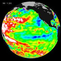 Data taken during a 10-day collection cycle ending March 9, 2001, show that above-normal sea-surface heights and warmer ocean temp. (red and white areas) still blanket the far-western tropical Pacific and much of the north (and south) mid-Pacific.