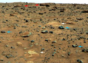 Three Classes of Martian rocks