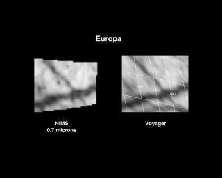 Europa 6th Orbit NIMS Data