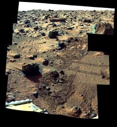 Barnacle Bill and Surrounding from Super-Pan