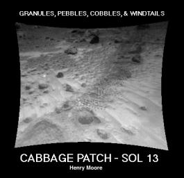 NASA's Sojourner rover image of the 'Cabbage Patch' shows small rounded objects on the surface that are about 3-4 cm across. Sol 1 began on July 4, 1997.