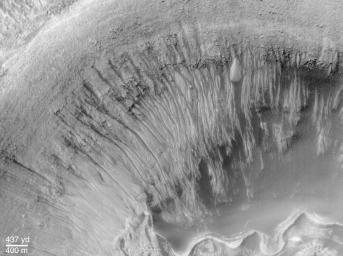 This image from NASA's Mars Global Surveyor of Newton Crater, a large basin formed by an asteroid impact that probably occurred on Mars more than 3 billion years ago.