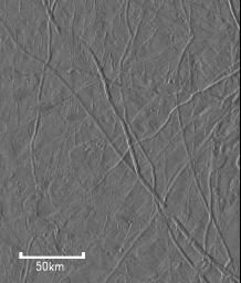 Flow-like Features On Europa