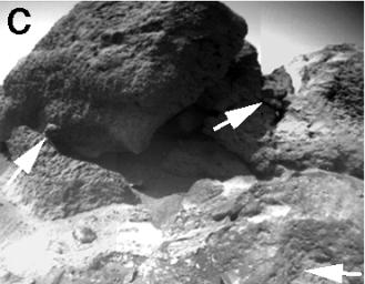 Sojourner Rover View of