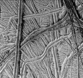High-Resolution Image of Europa's Ridged Plains