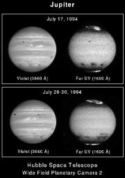 These four NASA Hubble Space Telescope images of Jupiter, as seen in visible (violet) and far-ultraviolet (UV) wavelengths, show the remarkable spreading of the clouds of smoke and dust thrown into the atmosphere.