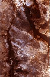 The ability of a sophisticated radar instrument to image large regions of the world from space, using different frequencies that can penetrate dry sand cover, produced the discovery in this image: a previously unknown branch of an ancient river.