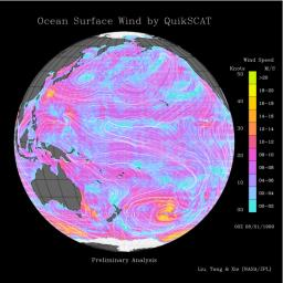 Pacific Ocean Surface Winds from QuikScat