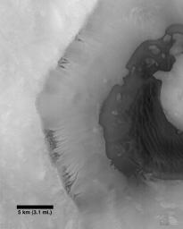 This image from NASA's Mars Global Surveyor was acquired during the Mar's southern spring season on December 29, 1997. A crater wall shows channeling suggestive of fluid seepage.