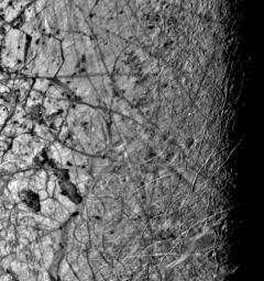 This image of the Jovian moon Europa was taken by NASA's Voyager 2 on July 9, 1979, as the spacecraft passed within 225,000 kilometers. This image was taken along the evening terminator, which best shows the surface topography of complex narrow ridges.