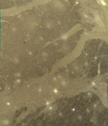 NASA's Voyager 2 took this picture of Ganymede in 1980 as the spacecraft was nearing its encounter with the ice giant.