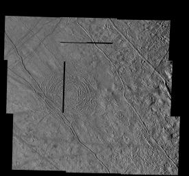 The Tyre multi-ring Structure on Europa