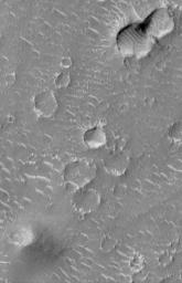 Craters and Bright Dunes of Isidis Planitia