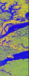 This false-color L-band image of the Manaus region of Brazil was acquired by NASA's Spaceborne Imaging Radar-C and X-Band Synthetic Aperture Radar (SIR-C/X-SAR) aboard the space shuttle Endeavour on orbit 46 of the mission.
