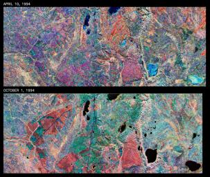 This is a comparison of images over Prince Albert, produced by NASA's Spaceborne Imaging Radar-C and X-band Synthetic Aperture Radar aboard the space shuttle Endeavour on its 20th orbit on April 10, 1994.