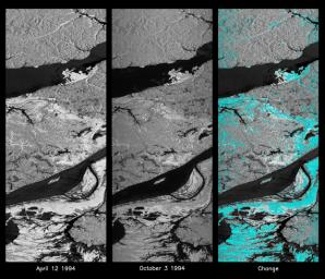 These L-band images of the Manaus region of Brazil were acquired by NASA's Spaceborne Imaging Radar-C and X-band Synthetic Aperture Radar (SIR-C/X-SAR) aboard the space shuttle Endeavour.