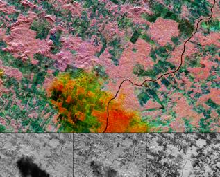 This multi-frequency space radar image from NASA's Spaceborne Imaging Radar-C/X-band Synthetic Aperture of a tropical rainforest in western Brazil.