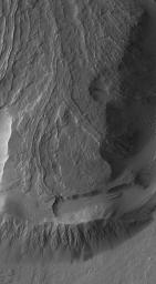 NASA's Mars Global Surveyor shows dust-covered lava flows on the lowermost south flank of Olympus Mons on Mars taken on October 12, 2006. One leveed lava channel disappears into a thick, pitted and cratered dust mantle.