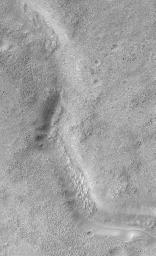 Look Out Below! Rough Terrain In the Warrego Valles Region