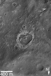 This image from NASA's Mars Global Surveyor shows a heart-shaped, eroded and partially-filled crater located near the southeast wall of Columbus Crater in the Mare Sirenum region of Mars.