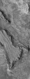 This image from NASA's Mars Global Surveyor shows layered, sedimentary rock exposures in the Sinus Meridiani region.