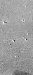Possible Rootless Cones or Pseudo craters on Mars
