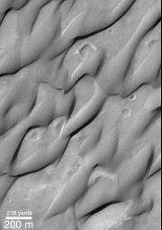NASA's Mars Global Surveyor shows cemented dunes found in the Herschel Basin of Terra Cimmeria on Mars.