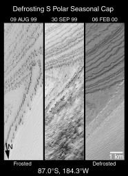 A High-Resolution Look at the Spring Thaw of the Martian South Polar Cap