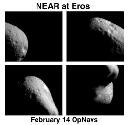 Eros: The First Look from Orbit