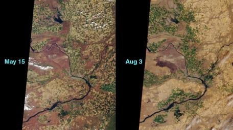 This image pair from NASA's Terra satellite shows 'before and after' views of a dry sagerush fire in the area around the Hanford Nuclear Reservation near Richland, Washington, in June, 2000.