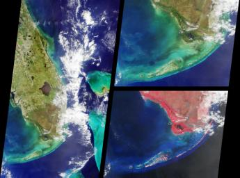 These images from NASA's Terra satellite images are of southern Florida were acquired on October 18, 2000 (Terra orbit 4446).
