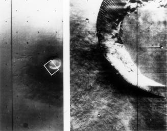 Mariner 9 views of shield volcano