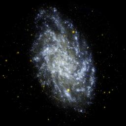 This image from NASA's Galaxy Evolution Explorer shows M33, the Triangulum Galaxy, is a perennial favorite of amateur and professional astronomers alike, due to its orientation and relative proximity to us.