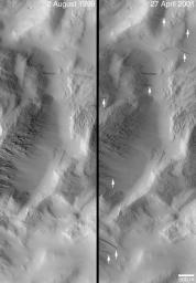 Changes Over a Martian Year -- New Dark Slope Streaks in Lycus Sucli