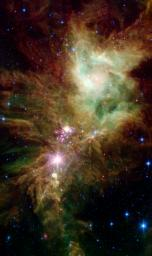 Newborn stars, hidden behind thick dust, are revealed in this image of a section of the Christmas Tree cluster from NASA's Spitzer Space Telescope, created in joint effort between Spitzer's infrared array camera and multiband imaging photometer instrument