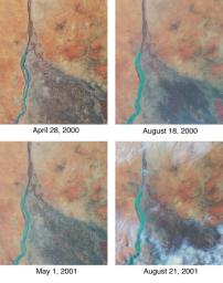 Nile River Fluctuations Near Khartoum, Sudan