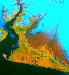 This image from the Advanced Spaceborne Thermal Emission and Reflection Radiometer (ASTER) instrument on NASA's Terra satellite covers an area of 55 by 40 kilometers (34 by 25 miles) over the southwest part of the Malaspina Glacier and Icy Bay in Alaska.