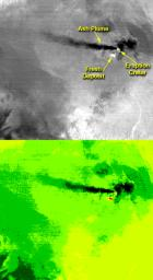 On the night of June 4, 2001, NASA's Terra spacecraft captured this thermal image of the erupting Shiveluch volcano, located on Russia's Kamchatka Peninsula.