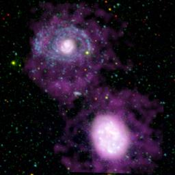 This image shows two companion galaxies, NGC 4625 (top) and NGC 4618 (bottom), and their surrounding cocoons of cool hydrogen gas (purple). The huge set of spiral arms on NGC 4625 (blue) was discovered by the ultraviolet eyes of NASA's GALEX.