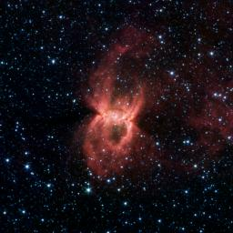 Black Widow Nebula Hiding in the Dust