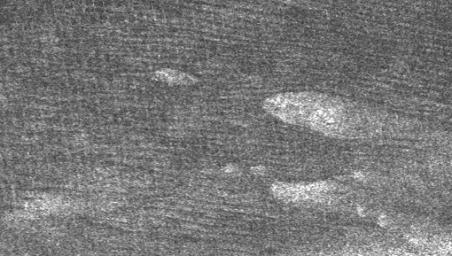 Large areas of this Cassini synthetic aperture radar image of Titan from NASA's Cassini spacecraft are covered by long, dark ridges.