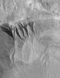 NASA's Mars Global Surveyor shows deep gullies cut into the wall of a south mid-latitude crater on Mars. Erosion has exposed layers in the upper wall of the crater.