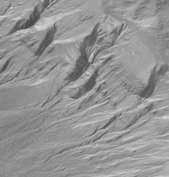 NASA's Mars Global Surveyor shows Newton Crater on Mars and its surrounding terrain exhibiting many examples of gullies on the walls of craters and troughs.