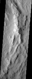 The rugged, arcuate rim of the 90 km crater Reuyl dominates this NASA Mars Odyssey image. Reuyl crater is at the southern edge of a region known to be blanketed in thick dust based on its high albedo (brightness) and low thermal inertia values.