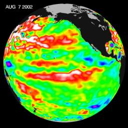 This NASA Topex/Poseidon image of sea-surface heights was taken during a 10-day collection cycle ending August 7, 2002.