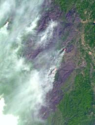 This image acquired by NASA's Terra satellite on December 18, 2002 shows the Bisquit Fire in southwest Oregon.