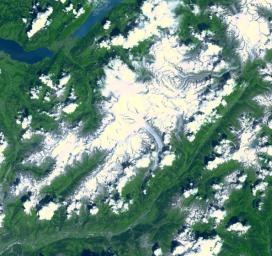 Aletsch Glacier, the largest glacier of Europe, covers more than 120 square kilometers (more than 45 square miles) in southern Switzerland. NASA's Terra satellite captured this image on July 23, 2001.
